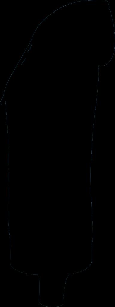 Basis Links