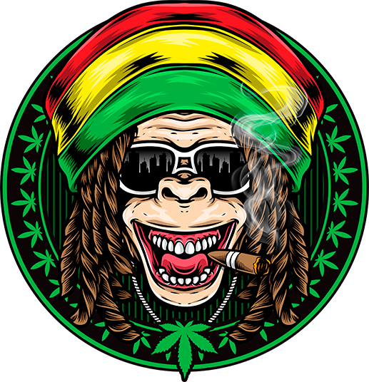 reggae ape